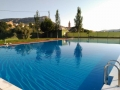 piscina_forcall